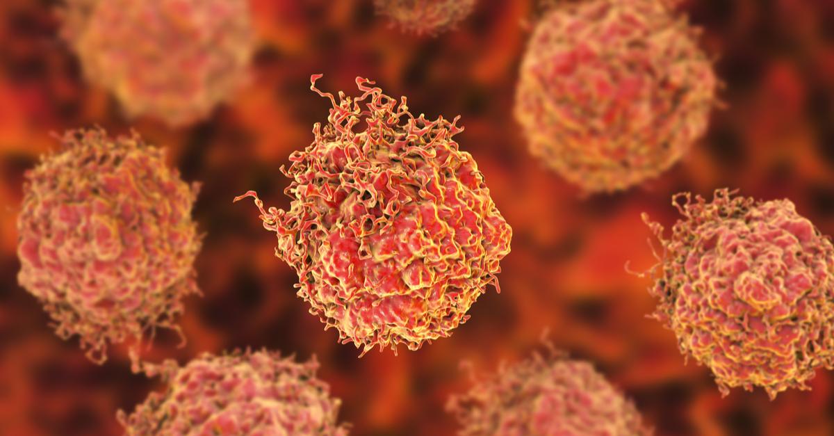 InVivoMAb anti-human/monkey MDR-1 (CD243) (Clone UIC2)